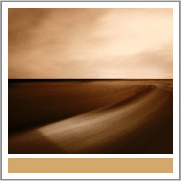 Small Craft on a Milk Sea (2010) by Brian Eno / Jon Hopkins / Leo Abrahams: Composition, Guitar